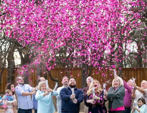 NEW Confetti Cannons  Gender Reveal and Party from $29.95